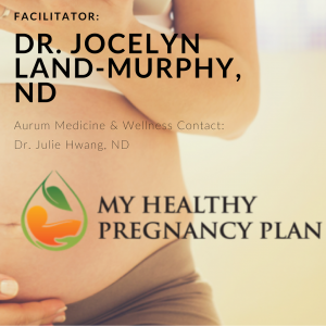 My Healthy Pregnancy Plan - Online Program