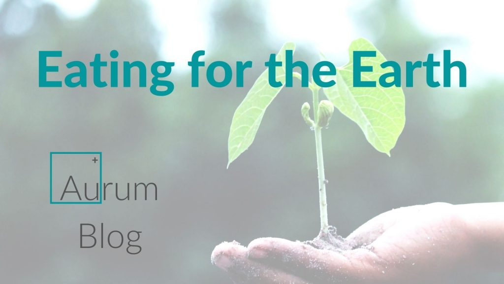 Eating for the Earth - Aurum Blog. A photo of a person's hand holding a small seedling plant.